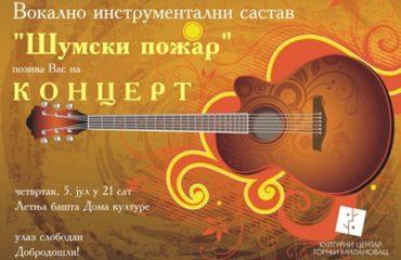 elektronska_pozivnica_-_koncert